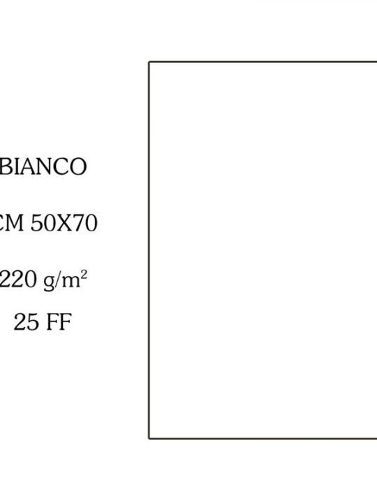 Canson Cartoncino 50X70Cm 220G Bianco