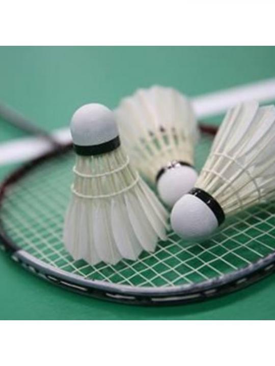 Conf. 3Pz Badminton