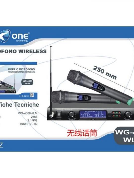 Kit Professionale Karaoke Wg400