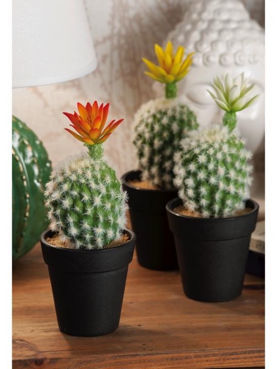 Vaso C/Cactus 1Fiore X Dec 3C D8X19