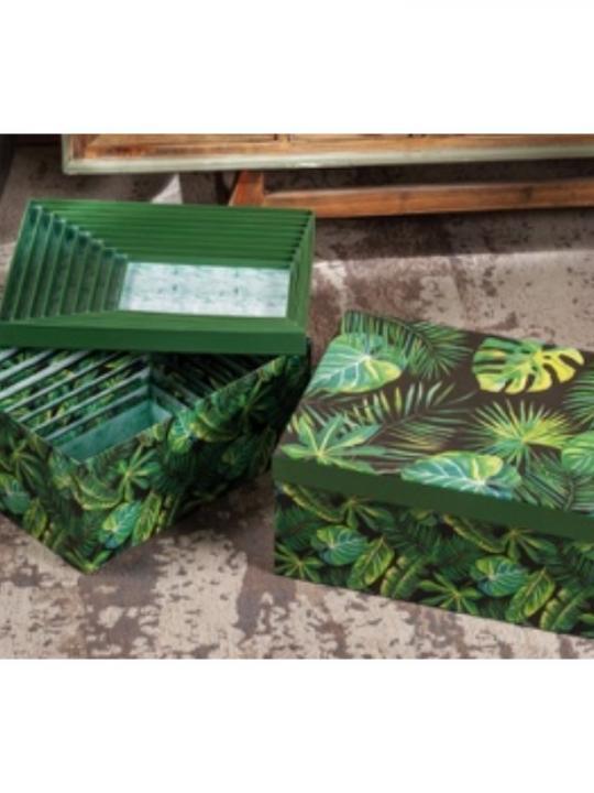 Set 10 Scatole Cartone Dec Foglie