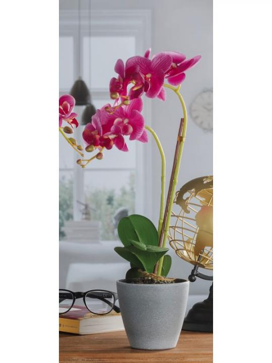 Vaso C/Orchidea 9F A4C Diam 12*H50
