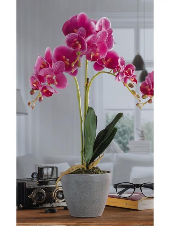 Vaso C/Orchidea 16F A4C Diam 14*H54