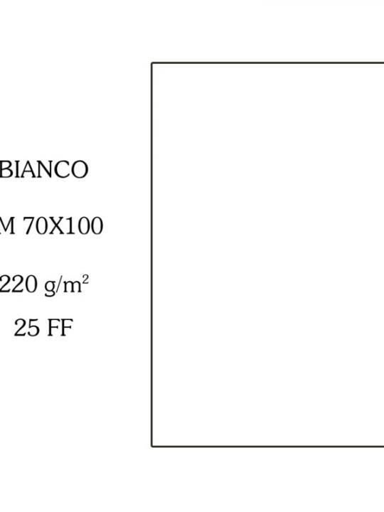 Canson Cartoncino 70X100Cm 220G Bianco